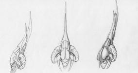 Protohead
